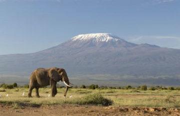 Kilimanjaro - Machame Route