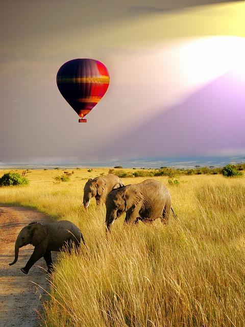 Adventures - Hot Air Balloon in Africa